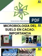 Liliam constanza garcía martínez_MICROBIOLOGÍA_DEL_SUELO_CACAO