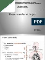 fosse-nasale-et-larynx(1).pptx