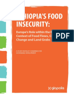 Ethiopia's Food Insecurity.pdf
