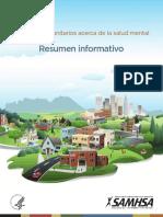 information_brief_spanish