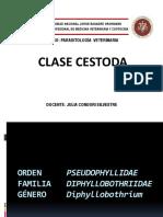 Orden Pseudophyllidae
