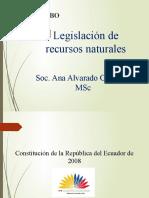 LEYES AMBIENTALES EN ECUADOR 2019CII.pptx