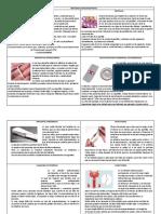 MÉTODOS ANTICONCEPTIVOS folleto
