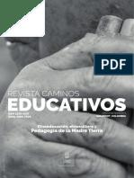 caminos-educativos-5-Entrevista a Green