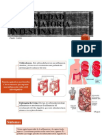 Gastro- Enfermedad intestinal