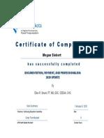 documentation continuing education certificate