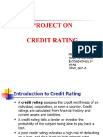 Credit Rating Shreya