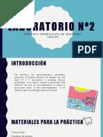Laboratorio n2 Micro.pptx