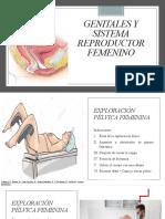 Genitales y sistema reproductor femenino NRC 88640