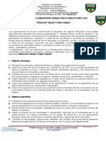 PLAN DE ACCION COMUNAL JAC DE PISCO CHIQUITO cronograma.docxI