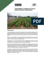 CV_RiegoTecnificado.pdf