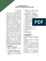 LABORATORIO Nº7 AISLAMIENTO E IDENTIFICACION DEL DNA