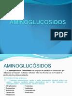 aminoglucosidos3ermes-140617131707-phpapp02-convertido