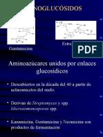 aminoglucosidosb