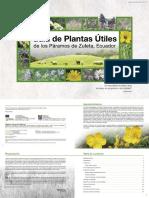 PLANTAS UTILES IBARRA