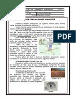 ATIVIDADE DE GEOGRAFIA 3º ANO Pontos cardeais