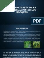 La importancia de la conservación de los bosques.pptx