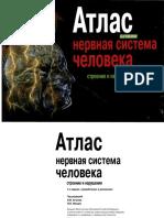 Атлас - нервная система человека. Строение и нарушения (Астапова, Микадзе, 2004).pdf