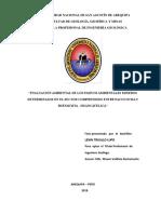 EVALUACIÓN AMBIENTAL DE LOS PASIVOS AMBIENTALES MINEROS DETERMINADOS EN EL SECTOR COMPRENDIDO ENTRE PACOCOCHA Y BUENAVISTA - HUANCAVELICA.pdf
