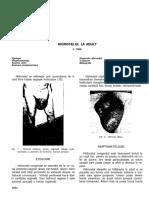 vdocuments.mx_angelescu-tratat-de-patologie-chirurgicalahidrocel.pdf