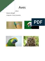 Aves.docx