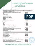 Estado Financiero ANPA Junio 2020