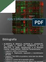 Modulo 2. 2.1 ADN y Cromosomas