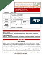 Informe de práctica 2 - Causalidad en Epidemiología