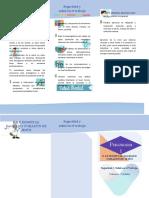 folleto Seguridad y Salud en el trabajo