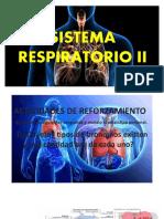 Sistema Respiratorio II