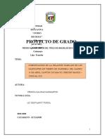 PROYECTO DE GRADO YESICA SALINAS