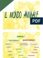 Presentazione Animali