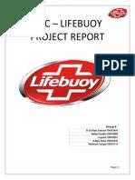 Group 6_IMC_Report_Lifebuoy