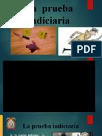 EXPO PRUEBA INDICIARIA pptx