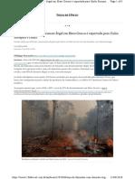 FSP_Soja de fazendas com desmate ilegal em Mato Grosso é exportada para União Europeia e China