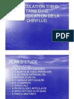 articulation de la cheville.pdf