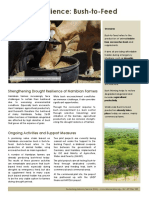 Bush-to-Feed-Factsheet