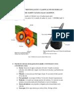 Taller-Aa1-Ev2-Identificacion-y-Clasificacion-de-Semillas.docx