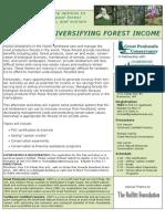 Forestworkshopflyer4-2010WORKSHOP