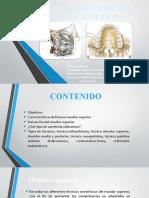 anestesia en maxilar superior.pptx
