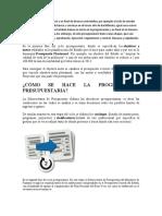 ciclo presupuestario.docx