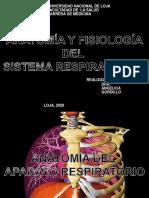 anatomiayfisiodelaprtrespirarorio29-160713234726-200511044236