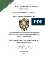 Caracterización agromorfológica y evaluación molecular de café (Coffea arabica L.), anexo Villa Libertad (1440 msnm) - Ayna - La Mar - Ayacucho