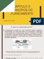 Capitulo 3 Princípios do planejamento