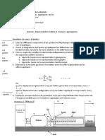 analyse lagrangienne