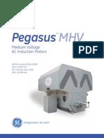 Pegasus™MHV