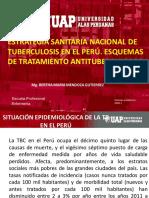 TSP II- SEMNA 6 - ESTRATEGIA TTO TBC