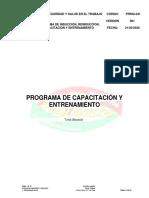 PROGRAMA DE  INDUCCION,CAPACITACIÓN Y ENTRENAMIENTO.pdf
