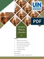 Lactancia materna derecho u oblugación (2)