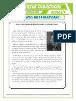 El-Aparato-Respiratorio-para-Tercero-de-Secundaria